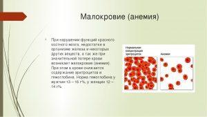 Анемия лечение народными методами