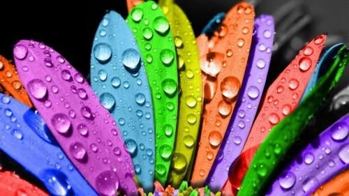 Цветовосприятие - нарушение цветового зрения.