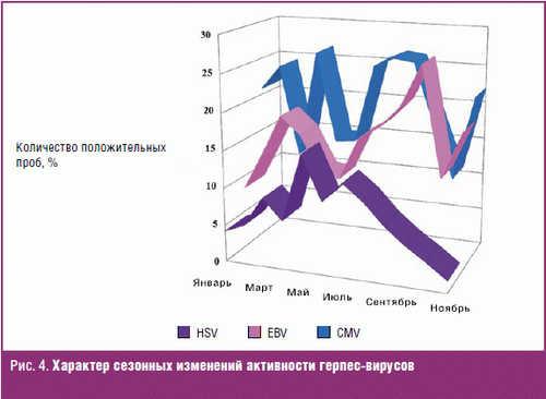 Характер сезонных изменений активности герпес-вирусов
