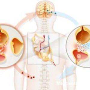 Повышенный пролактин у женщин: симптомы, причины и лечение