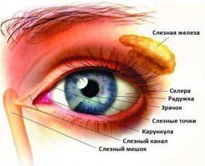 Слезотечение из глаз лечение народными методами