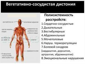 Вегетососудистая дистония лечение народными методами