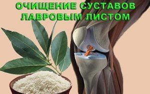 Народные рецепты лечения лавровым листом