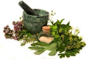 От перхоти из лекарственных трав народные средства