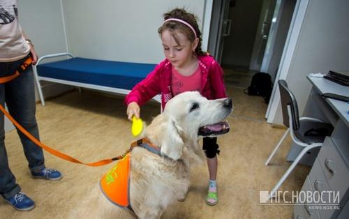 Акция с собаками-терапевтами прошла сегодня в областной больнице