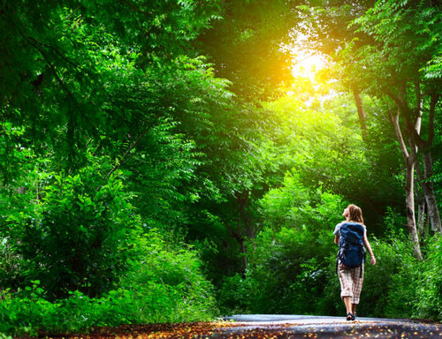 9 способов отдохнуть, если этим летом у вас нет отпуска. Изображение номер 9