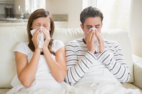 Как вылечить простуду. Изображение номер 9