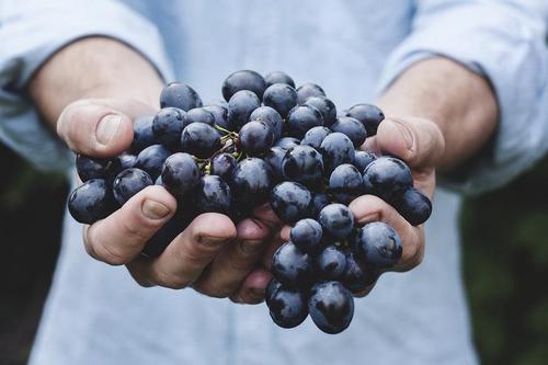 Виноград должен быть красным
