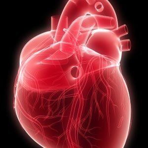 Легочное сердце: диагностика и лечение
