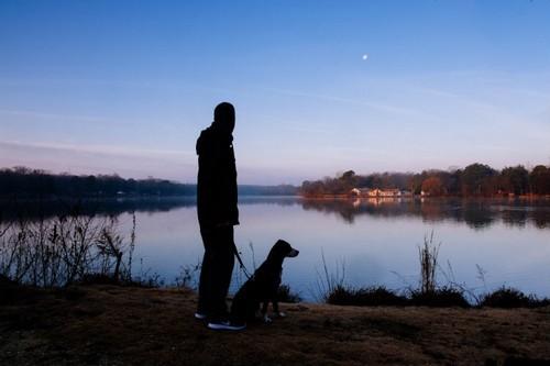 «Марли и я»: почему мы так тяжело переживаем смерть питомцев
