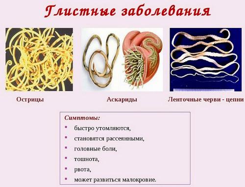 Диагностика на паразитов в организме человека