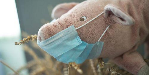 Свиной грипп, симптомы, у ребенка