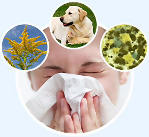 Предотвращение аллергической реакции