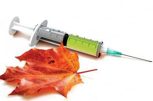 Показания для вакцинации, против гриппа